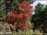 강원횡성 멋진 가을하늘 아래 태기산 정상에 서다.