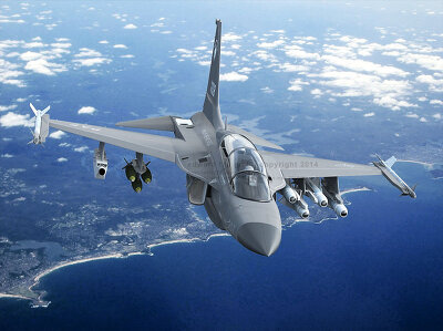الوداع المؤجل - A-10 Thunderbolt II - صفحة 2 256EBA38545304AF1C3674