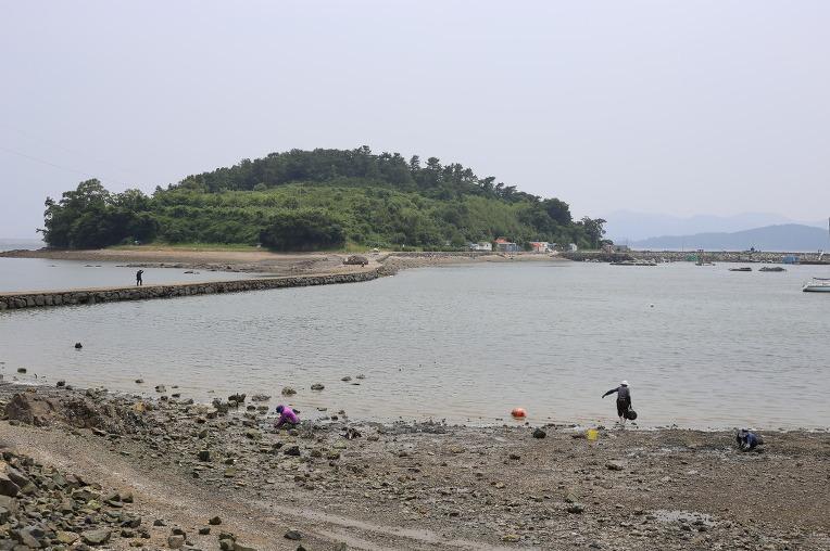 여수 웅천친수공원에서 바다를 즐기는 방법