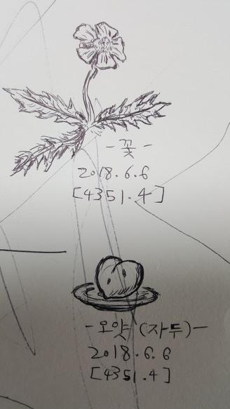 [낙서]꽃과 오얏